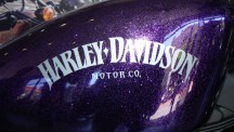 Metal flake in purple