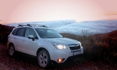 Above the clouds in the Drakensberg