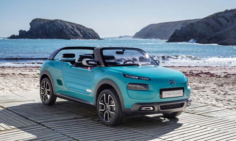 Based on the C4 Cactus