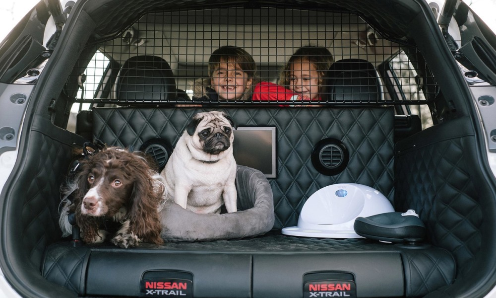 Nissan X-Trail 4Dogs space