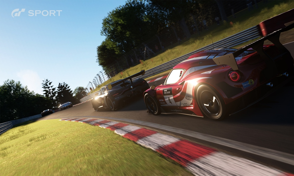 The number of cars is limited in GT Sport but collection is not the focus of the game.