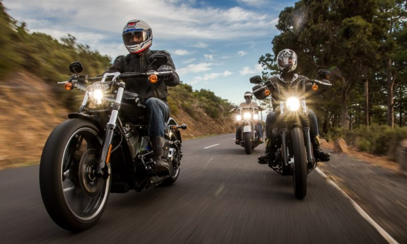Harley Softail roadtrip