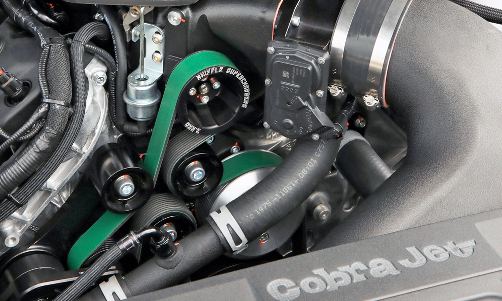 Whipple supercharger, anyone?